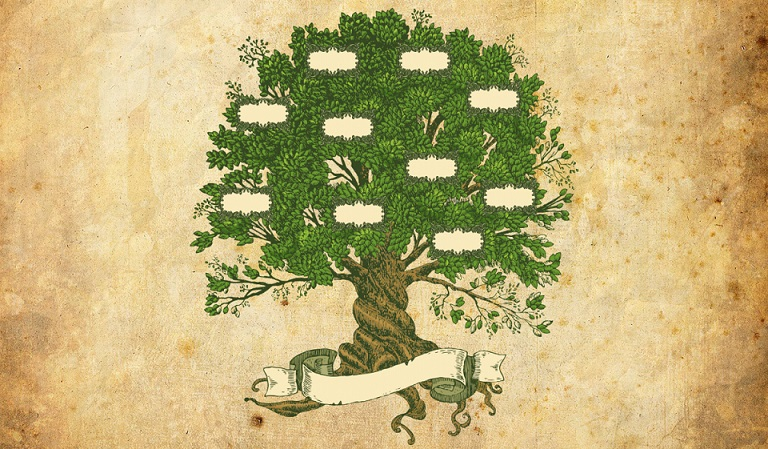 родинне дерево pra.in.ua
