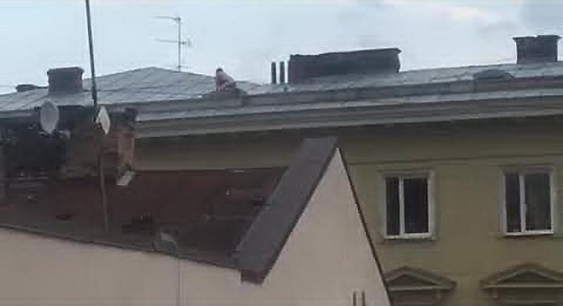 У Львові пара займалась коханням на даху будинку, що у центрі міста