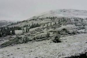 """Карпати знову """"замело"""" снігом: фото та відео аномалії"""