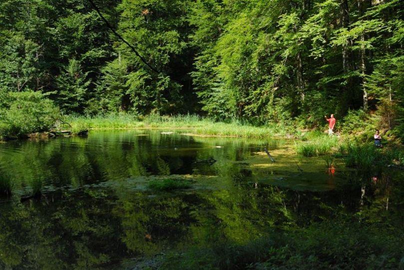 Лебедин озеро