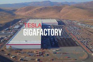 Tesla може відкрити в Україні завод Gigafactory