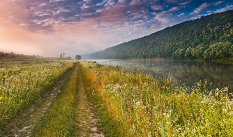 Поле на Дністрі (фото: Леонід Тіт)