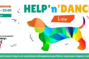 На благодійній вечірці у Львові збиратимуть гроші на створення банку крові для собак та котів
