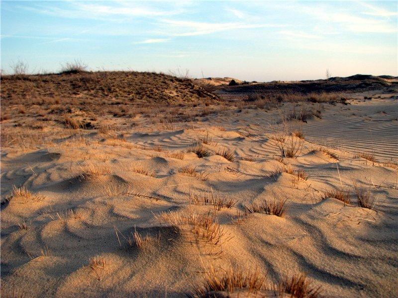 Олешківські піски(фото: racking.org.ua)