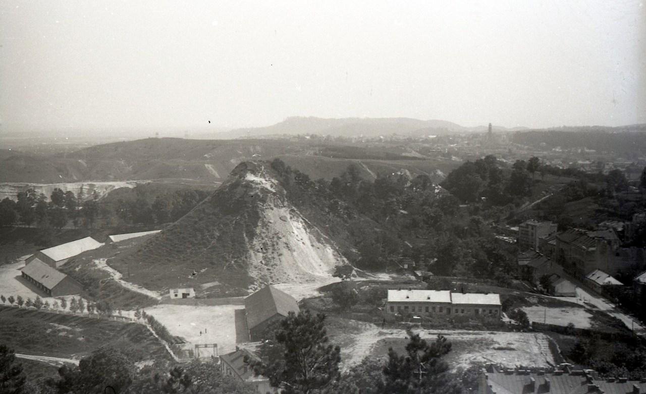 Гора князя Лева (Лиса гора). Фото Анатолія Васильківського, 1956 р.
