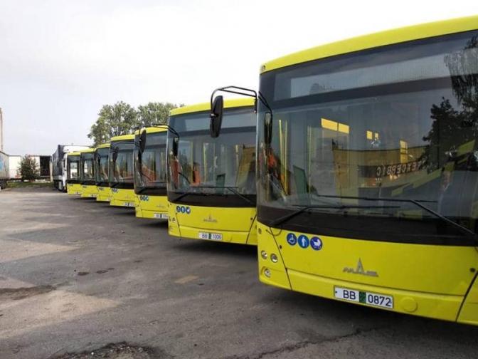 автобус МАЗ білорусь білоруський автобуси