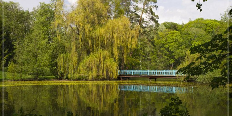 Парк Тростянець