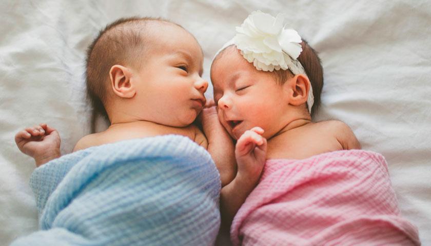 немовля двійня маллюк