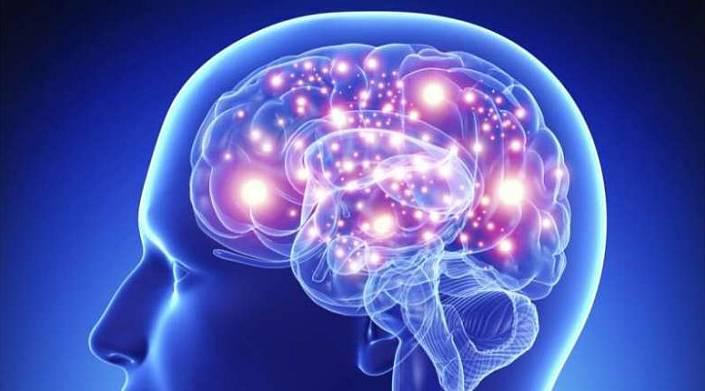 мозок розум мислення свідомість