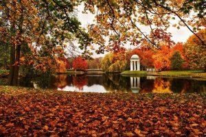 7 парків України, які варто відвідати восени