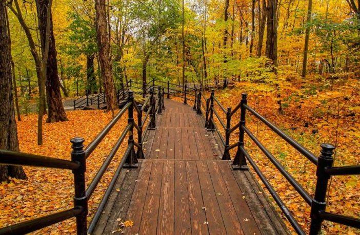 осінь парк 10 парків України для прогулянок восени