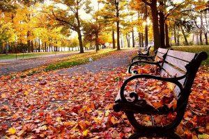 18 листопада – яке сьогодні свято та чого не можна робити. Іменини, традиції, заборони, прикмети та визначні події