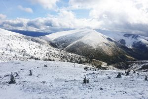 Карпати замело снігом: вражаючі фото з Драгобрата