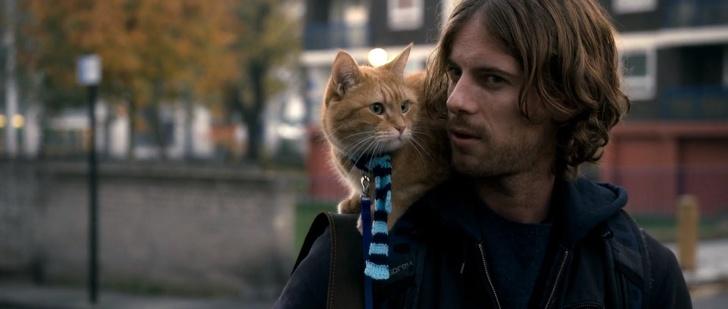 Вуличний кіт на ім'я Боб/A Street Cat Named Bob