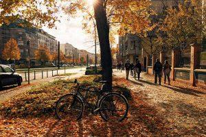 24 жовтня – яке сьогодні свято та іменини. Традиції, заборони, прикмети та визначні події