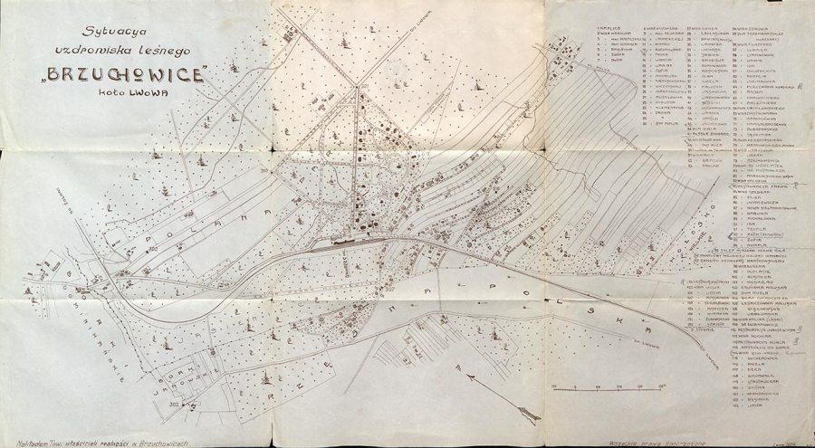 Мапа Брюхович столітньої давності