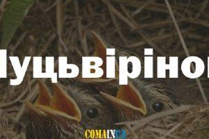 10 милозвучних слів, які можуть вимовити лише українці