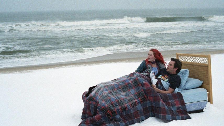 Вічне сяйво чистого розуму (англ. Eternal Sunshine of the Spotless Mind, 2004)