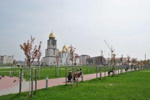 На Сихові у парку імені Івана Павла ІІ висадили сакури