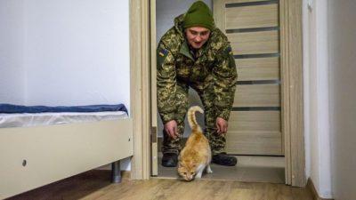 У Львові учасникам бойових дій можуть компенсувати придбання житла