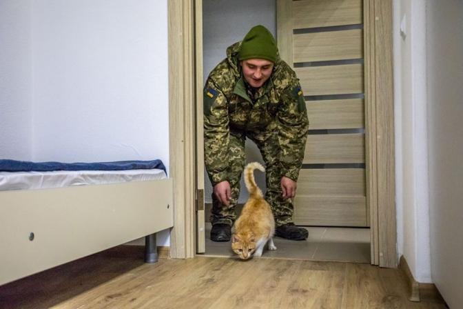 125 військових і кіт заселились у новий гуртожиток на Львівщині. Фото дня