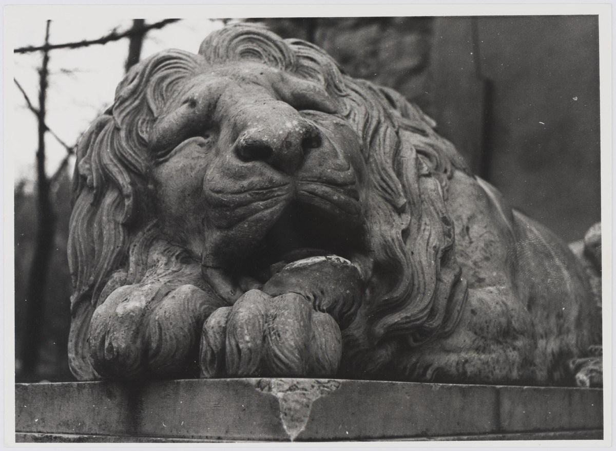 Львів, Лев біля Порохової вежі, фото 1976 року