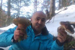Гриби з-під снігу. У Верховині відкрили грибний сезон (відео)