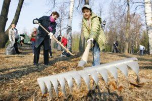 Львів'ян кличуть на спільну толоку в Замарстинівський парк. Буде і пікнік
