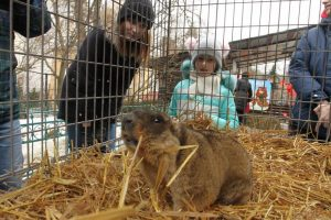 З Львівського міського дитячого еколого-натуралістичного центру викрали тварин
