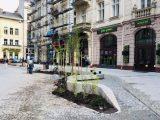У Львові озеленюють центральну вулицю Руданського