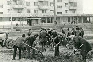 Як село Кульпарків стало частиною Львова