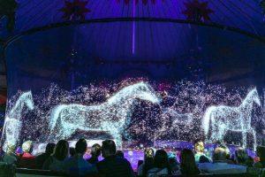 Німецький цирк відмовився від дресированих тварин – їх замінили голограми