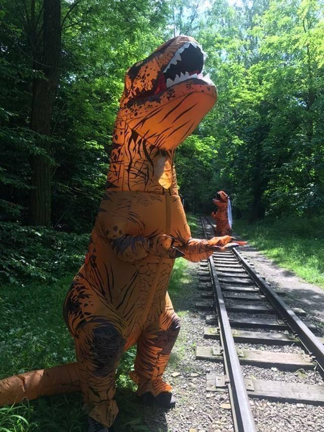 Пара львів'ян одружилась у костюмах тиранозаврів