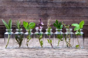 Тих, кого постійно кyсають комарі, врятують ці 11 природних ароматів