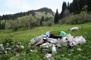 Львів'яни створили додаток для очистки сміття в горах