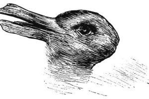 Незвичайний тест: Ви бачите качку чи кролика?