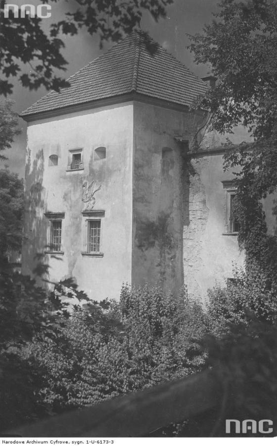 Грифон на стіні Свірзького замку. Фото 1910-1939 рр.