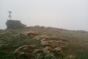 В Карпатах випав сніг. Фото