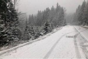 У Карпати прийшла зима: все засипало снігом (фото)